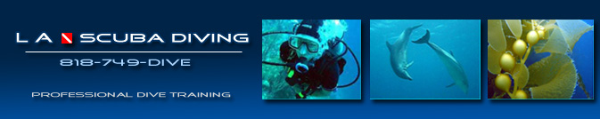 Los Angeles Scuba Diving - Professional PADI Scuba Instruction