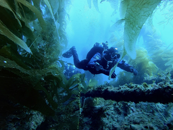 Learning to dive Safely With L.A. SCUBA DIVING - Professional Scuba Instruction Los Angeles