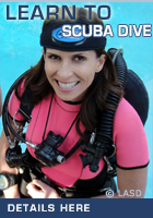 Learn To SCUBA Dive & Get SCUBA Certified with L.A. SCUBA DIVING in Los Angeles