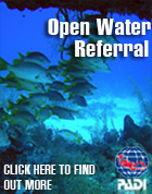 PADI Open Water Referrals Everyday with L.A. SCUBA DIVING - Best Training in L.A.
