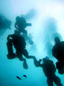 Advanced Open Water Scuba Diving Los Angeles