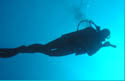 learn to scuba sillouette diver